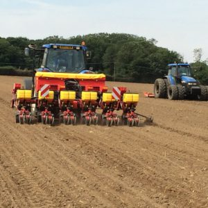 Precision Seed Drills